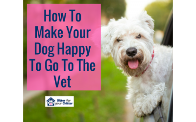 How To Make Your Dog Happy To Go To The Vet