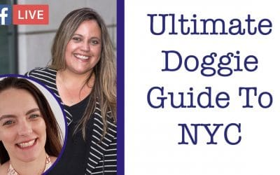 The Ultimate Doggie Guide To NYC (w/ Heather Gaida) – Critter Chat Episode 4